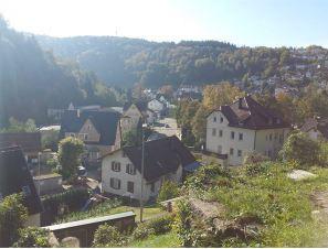 Denkmalgeschütztes Anwesen mit Schwarzwald – Aussicht 1